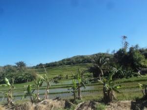 Travel Philippines.