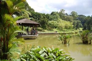 Travel Singapore. Botanic Gardens