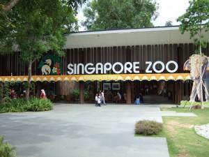 Travel Singapore. Visit the zoo.