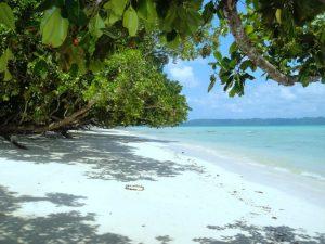 Havelock Island. Hidden Gem in Asia