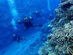 Global Help Swap diving.