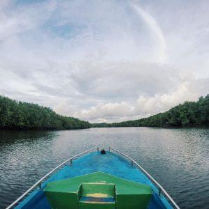 mangroove tour as things to do in Bintan