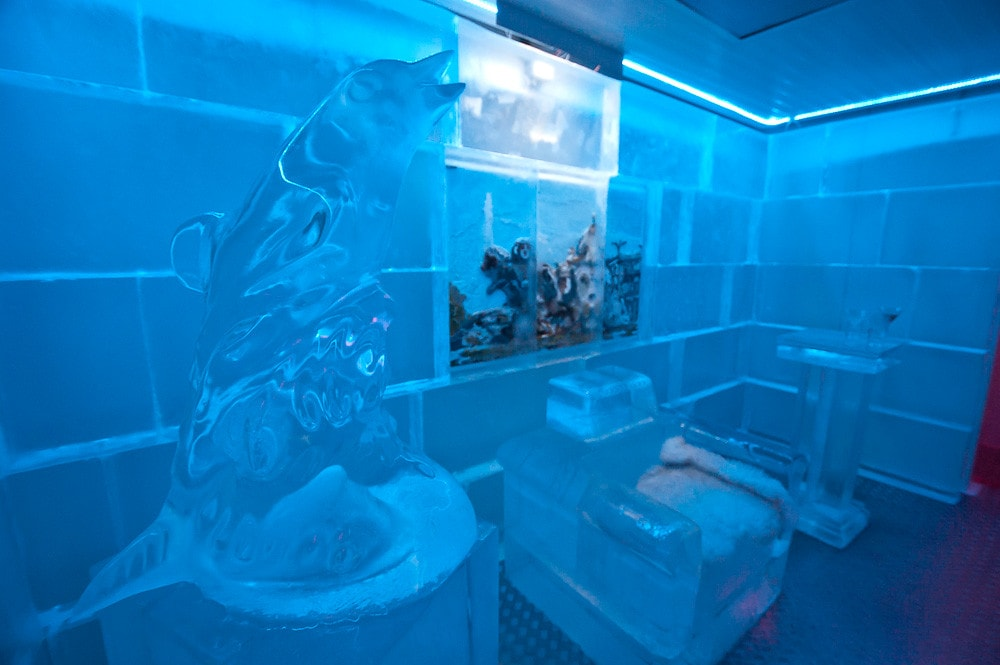 Ice Bar in Madrid,