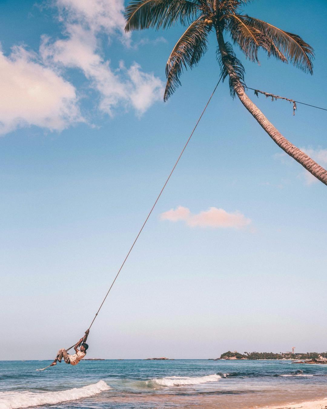 instagrammable places in Sri Lanka, palm tree in Dalawella beach
