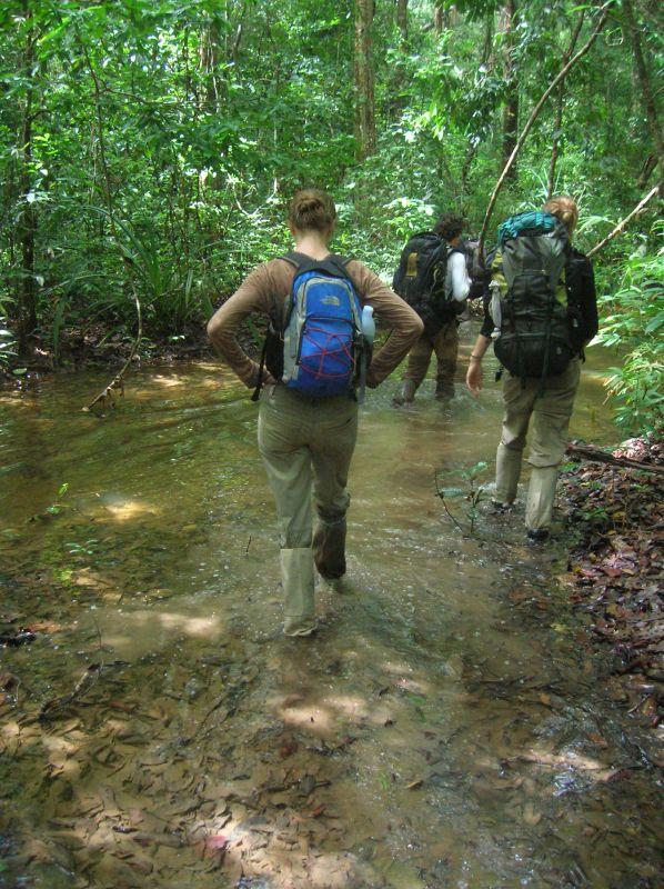 Virachey National Park, Cambodia Tourist Spots
