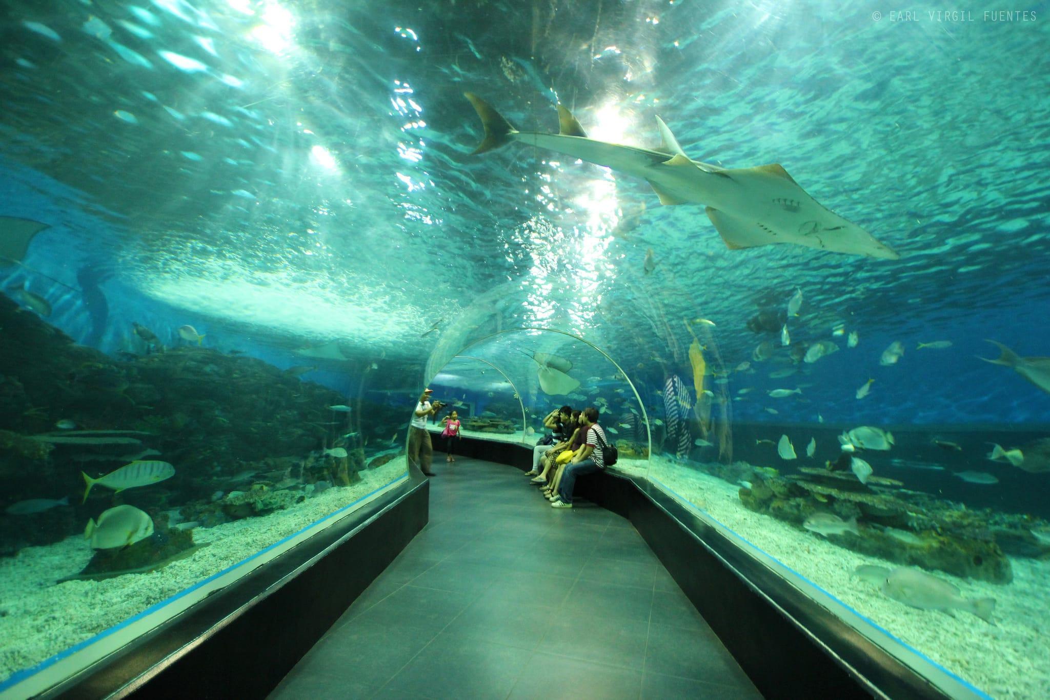 Manila tourist spots, Manila Ocean Park