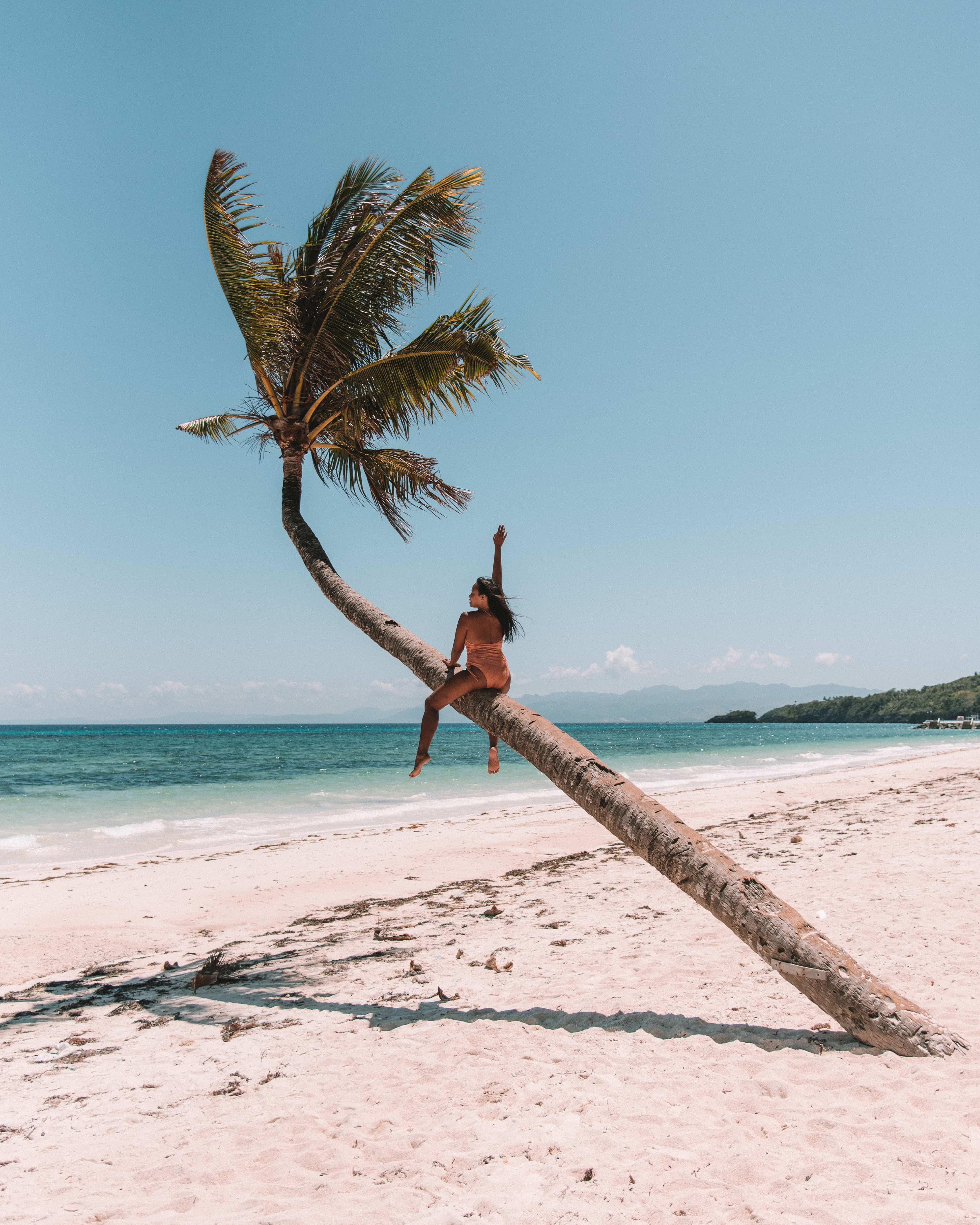 How to get to Carabao Island, Carabao Island travel guide, what to do in Carabao Island, Carabao Island, bent palm tree in Carabao island, bent palm tree