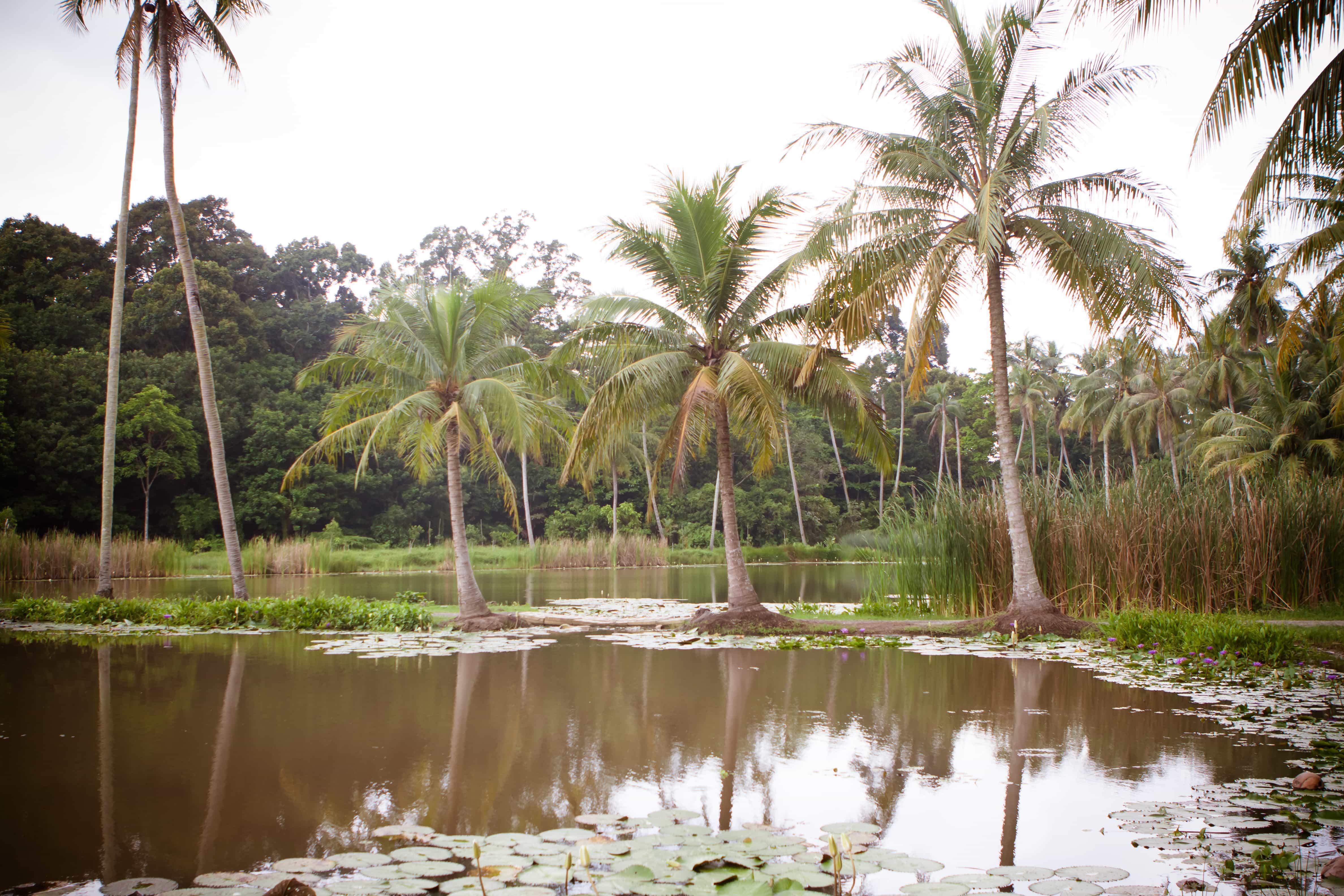Pulau Ubin, Singapore tourist spots