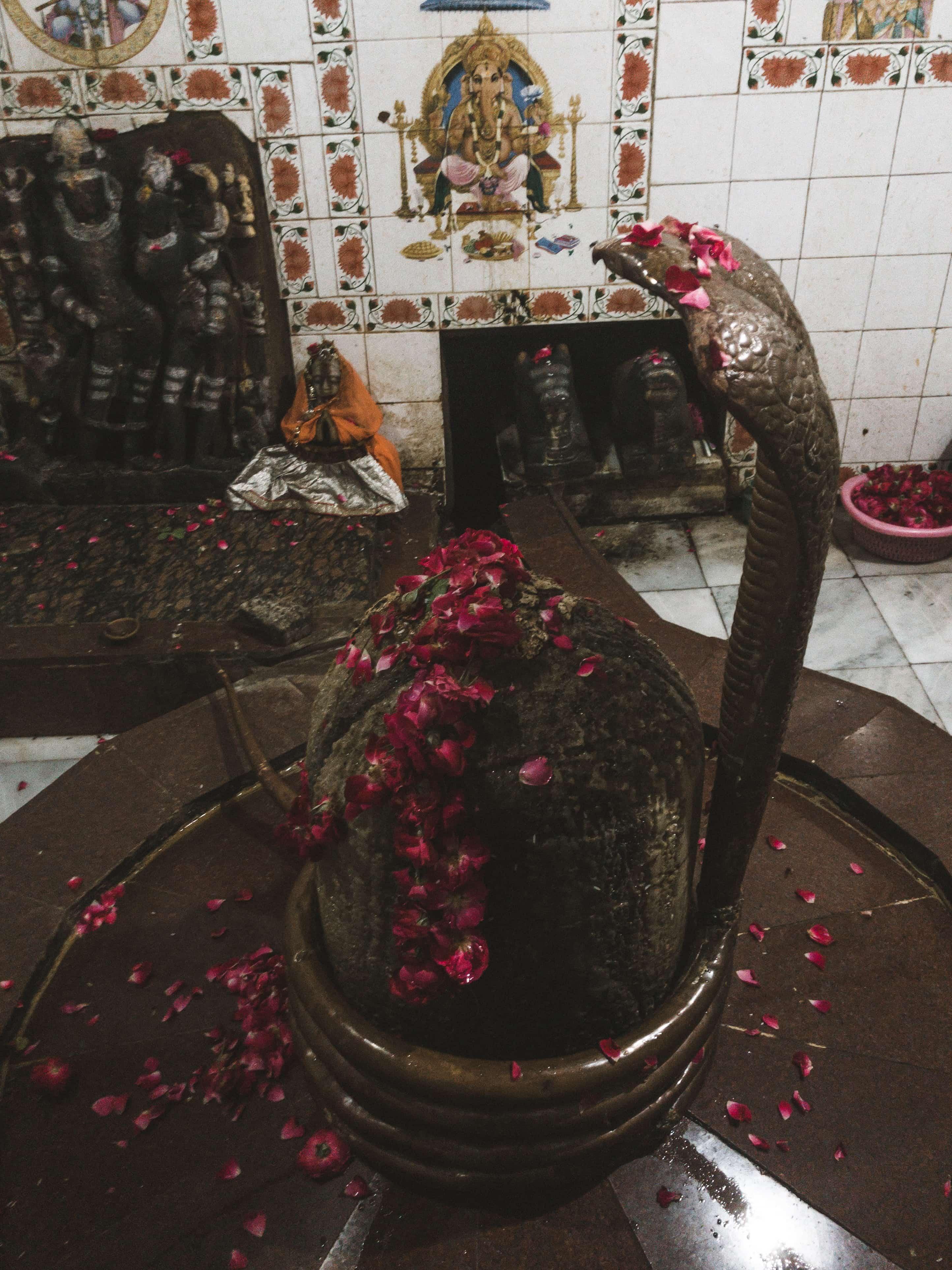 shiva lingam, thigns to do in Pushkar, pushkar travel guide