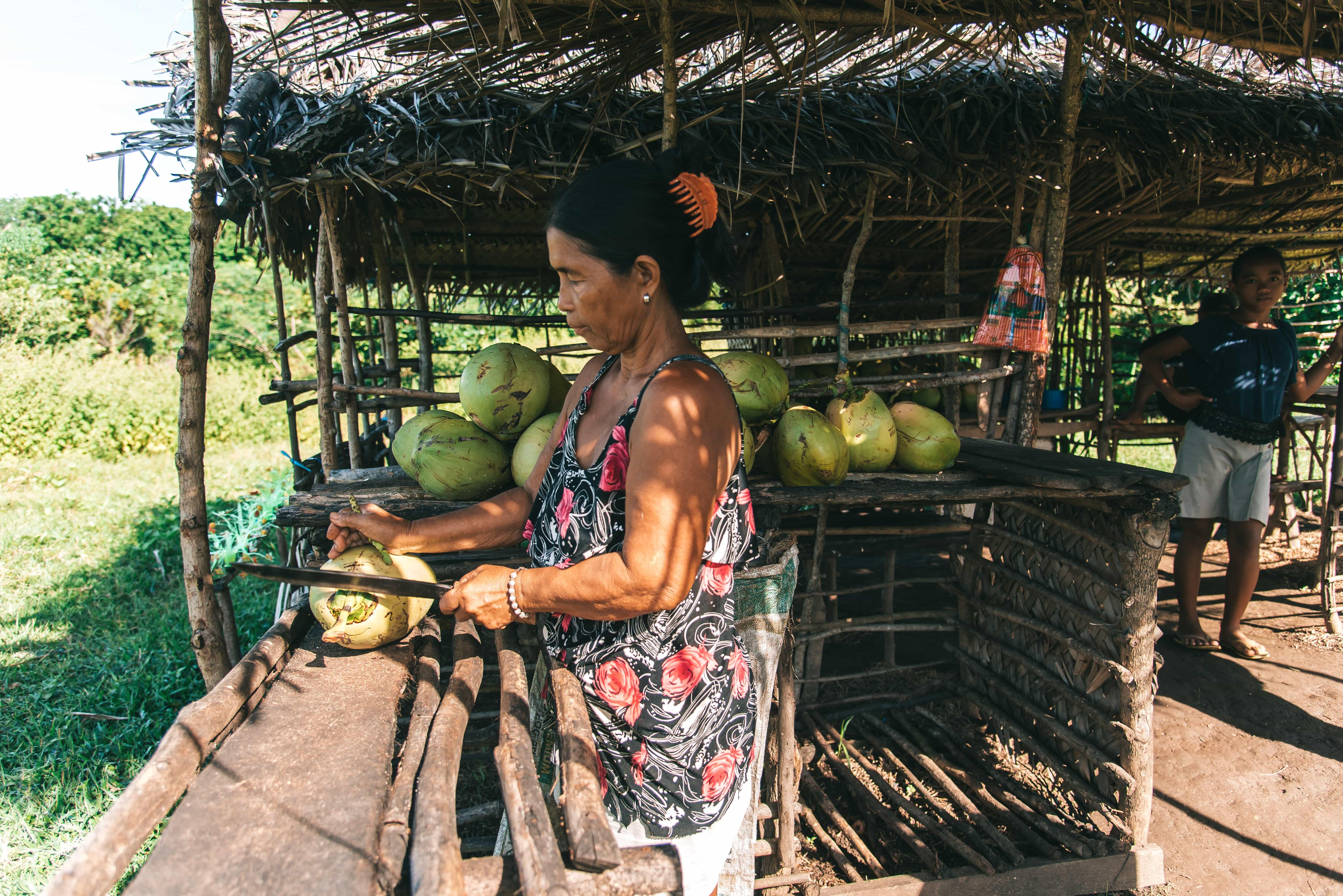 Caramoan tourist spots, Caramoan travel guide, Guniahoan Island