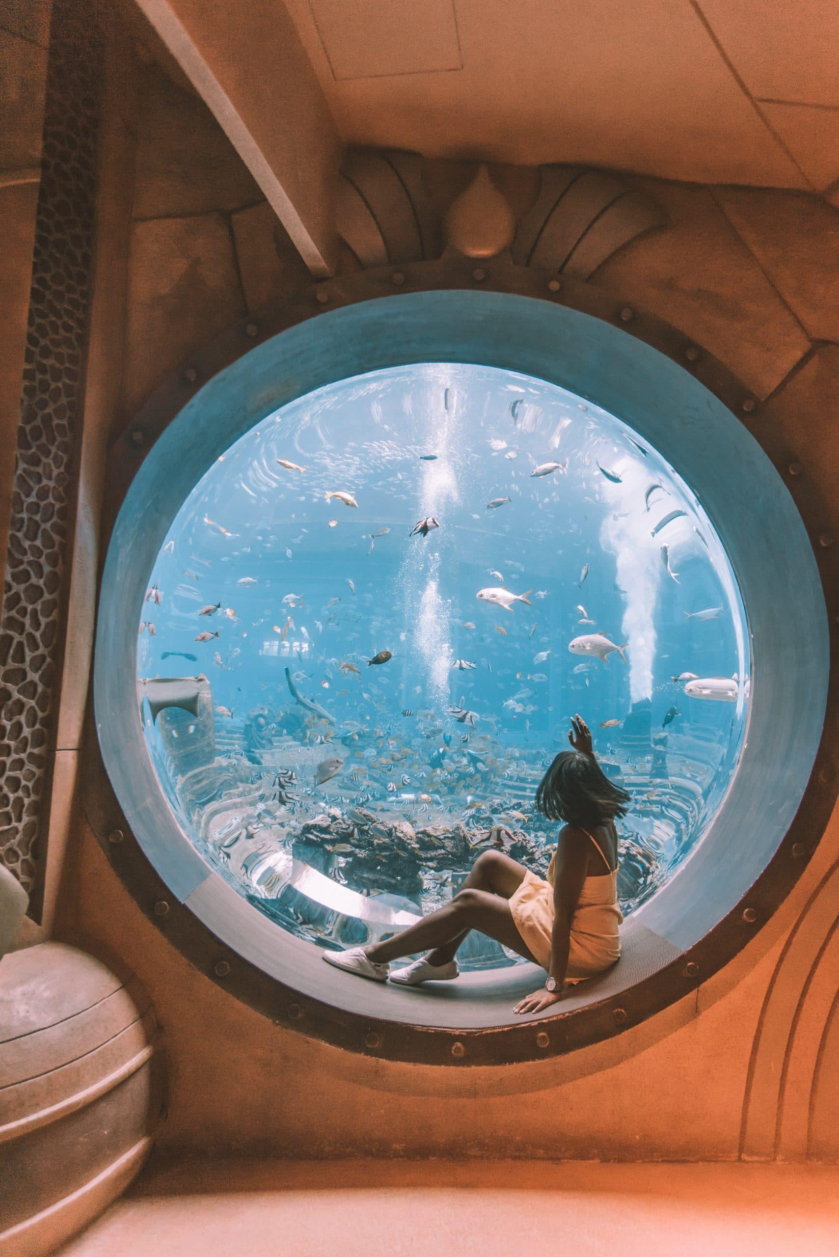 things to do in Sanya, Sanya travel guide, Atlantis Aquarium