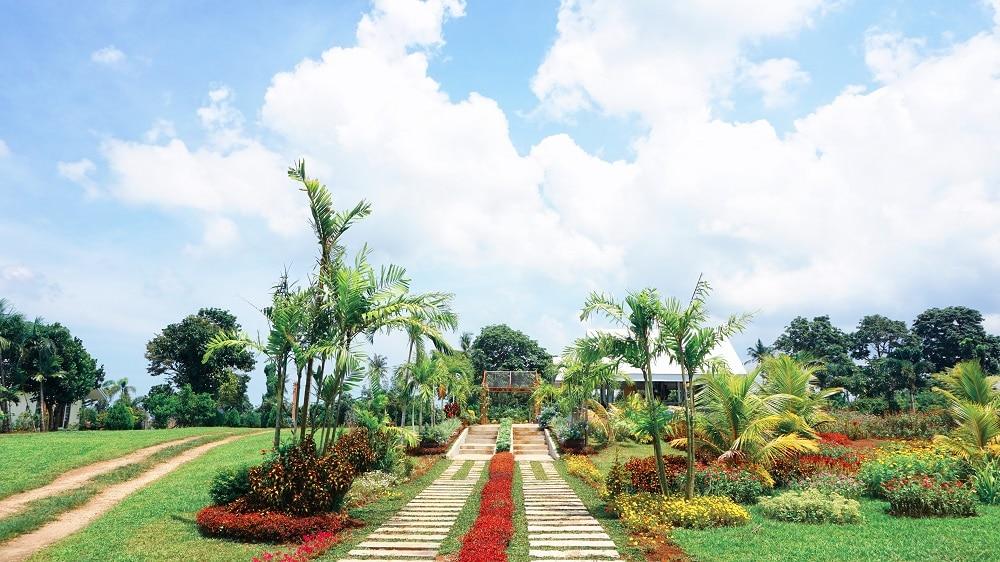 Sonrisa Farm, Naga tourist spots, Naga travel guide
