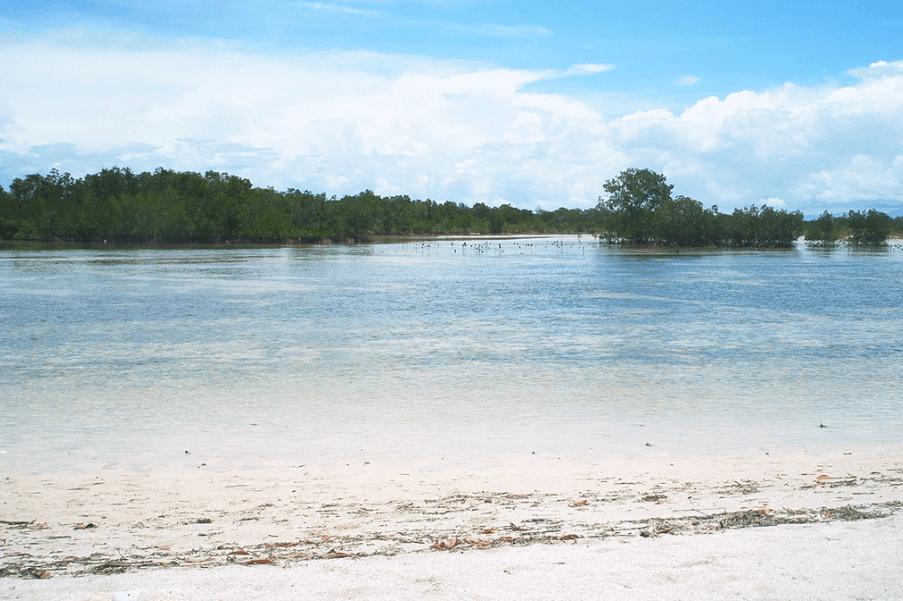 Sorsogon Tourist Spots - Olango Beach, Sorsogon travel guide