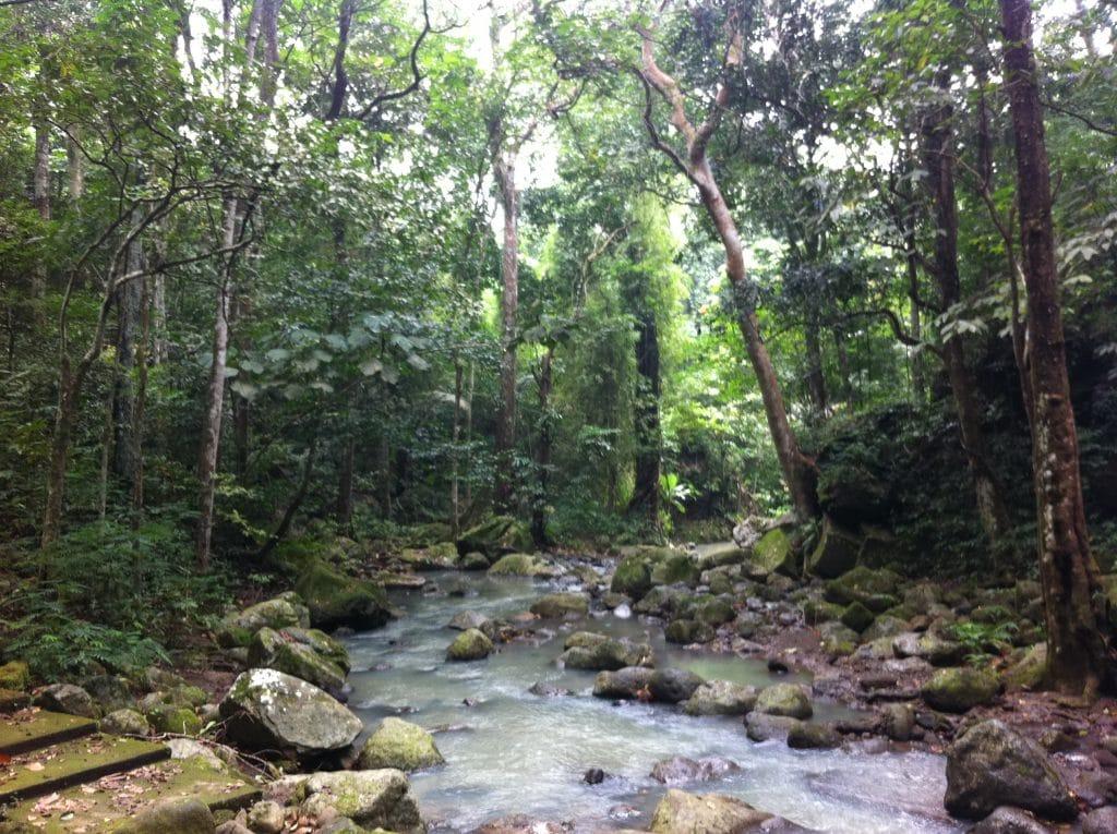 Makiling Botanical Gardens, laguna tourist spots, laguna travel guide