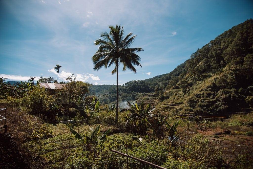 Pongas waterfalls, Ankileng village, hiking pongas waterfalls sagada, hiking in Sagada, activities in Sagada, Sagada tourist spots, Sagada travel guide, Pongas waterfalls