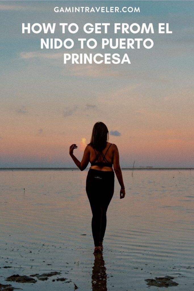 el nido to puerto princesa, el nido to puerto princesa flight, el nido to puerto princesa airport, el nido to puerto princesa travel time