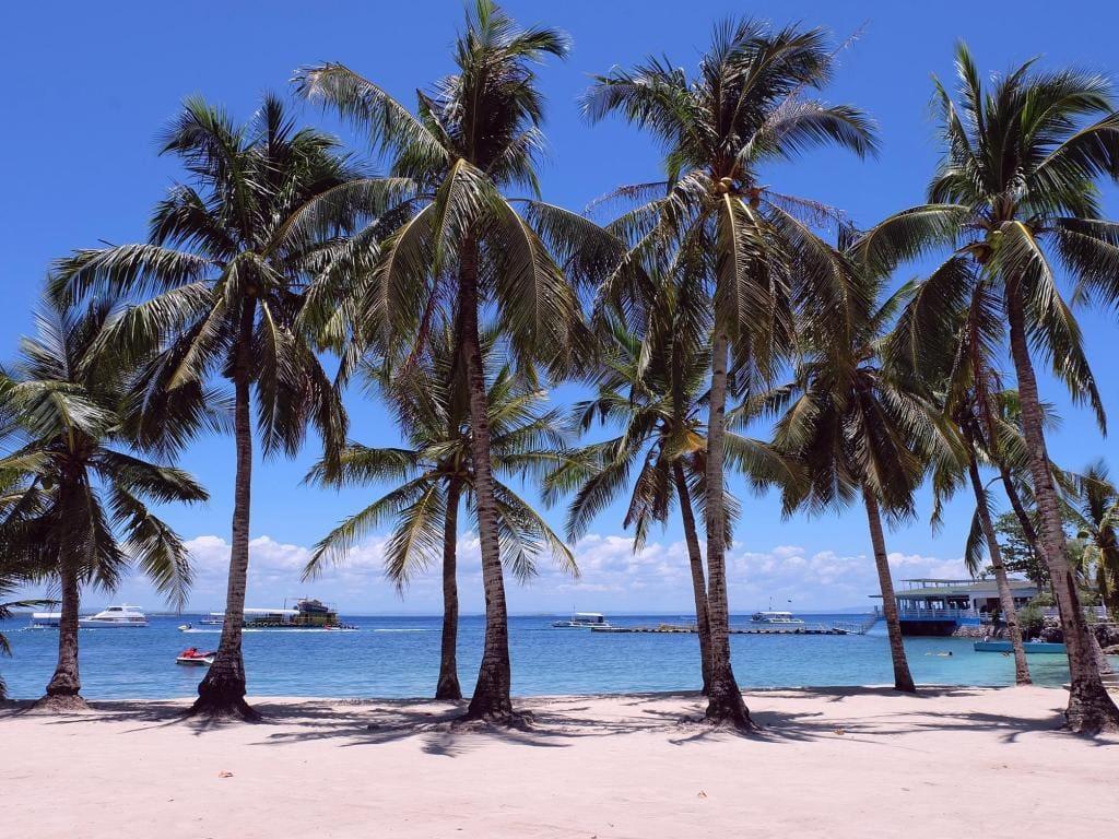 Beach resorts in Cebu