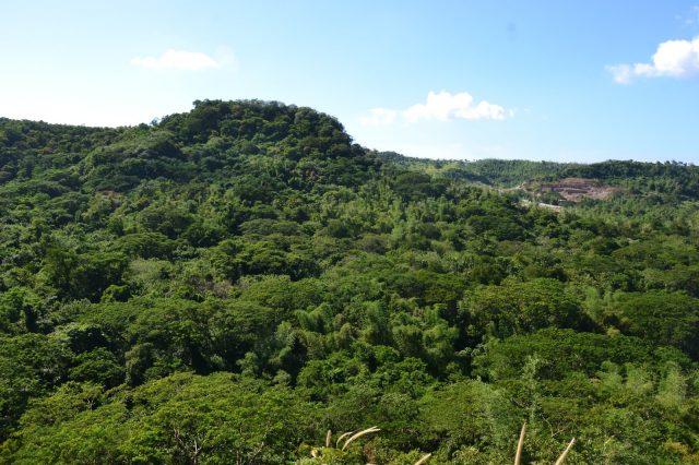 Mt Nagpatong, cavite tourist spots, things to do in cavite, manila to cavite, cavite falls, falls in cavite