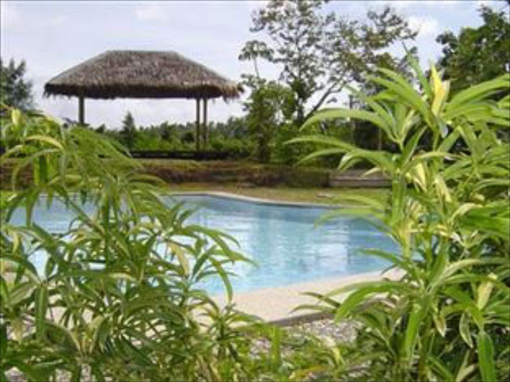 The Tamarind Tree Resort, beach resorts in quezon, beaches in quezon, quezon beaches