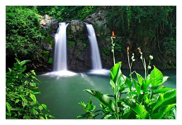 Bunga Falls,  falls in laguna, laguna falls