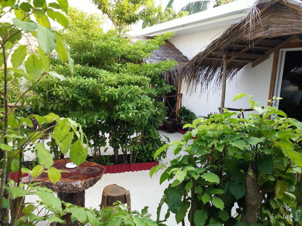 Maafushi View, maafushi island, hotels in maafushi, maafushi guest house, maafushi island hotels, maafushi hotels