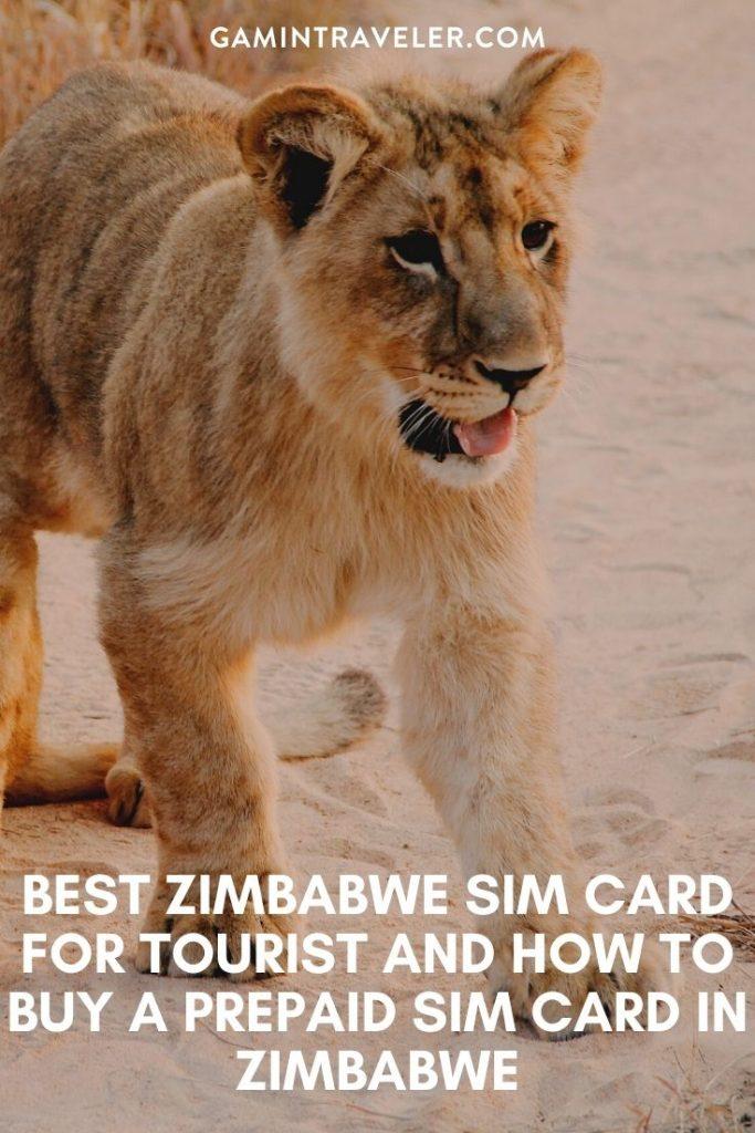 best tourist sim card zimbabwe, zimbabwe sim card for tourists, best sim card for zimbabwe, zimbabwe prepaid sim card, zimbabwe sim card for tourist, tourist sim card zimbabwe, prepaid sim card zimbabwe, zimbabwe tourist sim card, sim card in zimbabwe, sim card zimbabwe, zimbabwe prepaid sim card, zimbabwe sim card airport, zimbabwe sim card