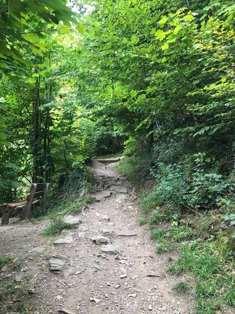 harder kulm, harder kulm funicular, harder kulm tickets, harder kulm opening hours, Harder Kulm Hike, Hiking Harder Kulm