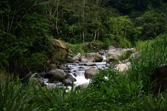 Panama travel tips, things to know before visiting Panama, facts about Panama, Boquete