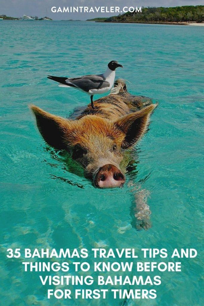 Bahamas Travel Tips, things to know before visiting Bahamas, facts about Bahamas