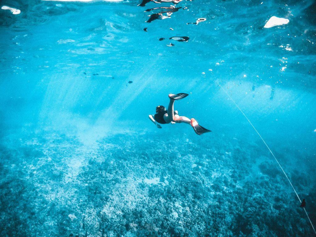 Bahamas Travel Tips, things to know before visiting Bahamas, facts about Bahamas, Snorkeling in Bahamas