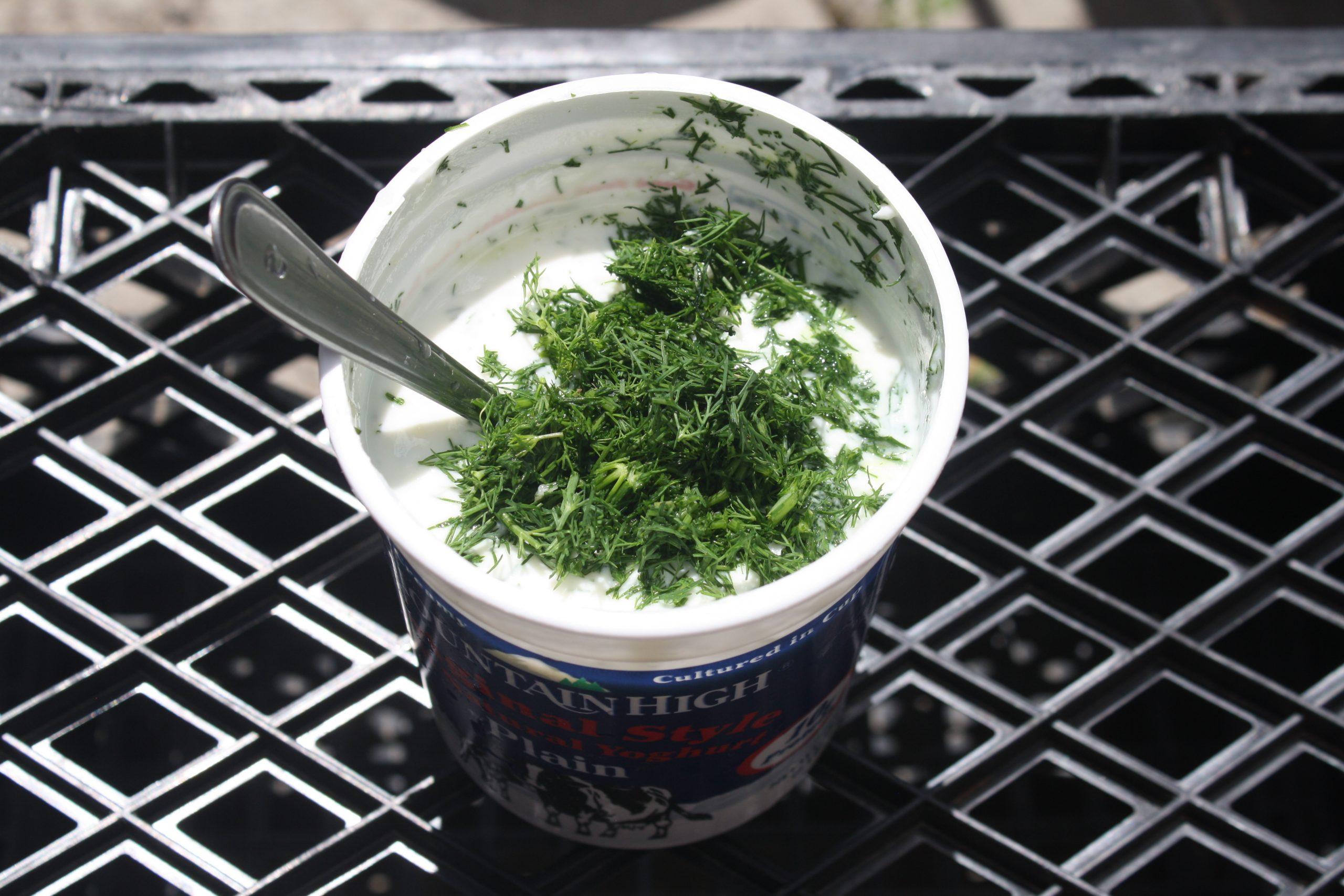 Tzatziki, vegetarian food in Cyprus, vegan food in Cyprus, Cypriot vegetarian dishes, Vegetarian Dishes In Cyprus, vegan dishes in Cyprus