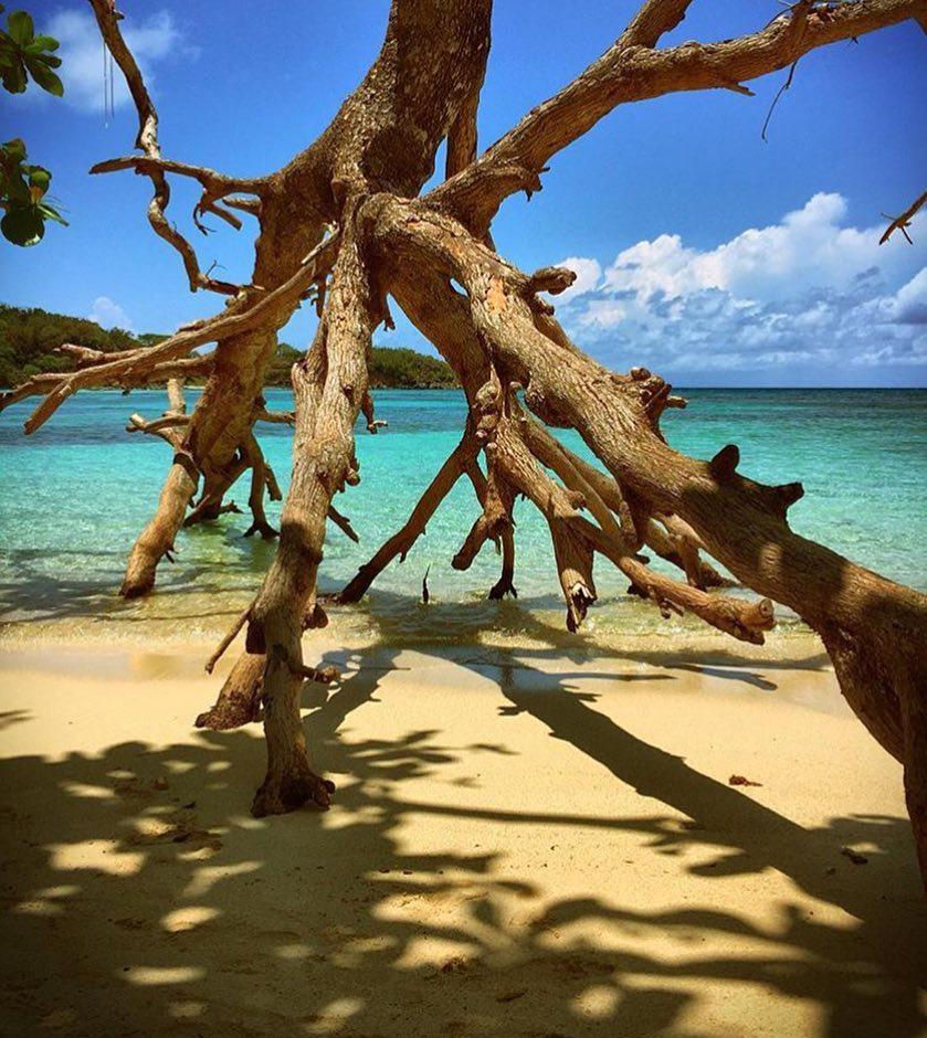 Jamaica instagram spots, most instagrammable places in Jamaica, Jamaica photos, Jamaica photography, Winifred Beach