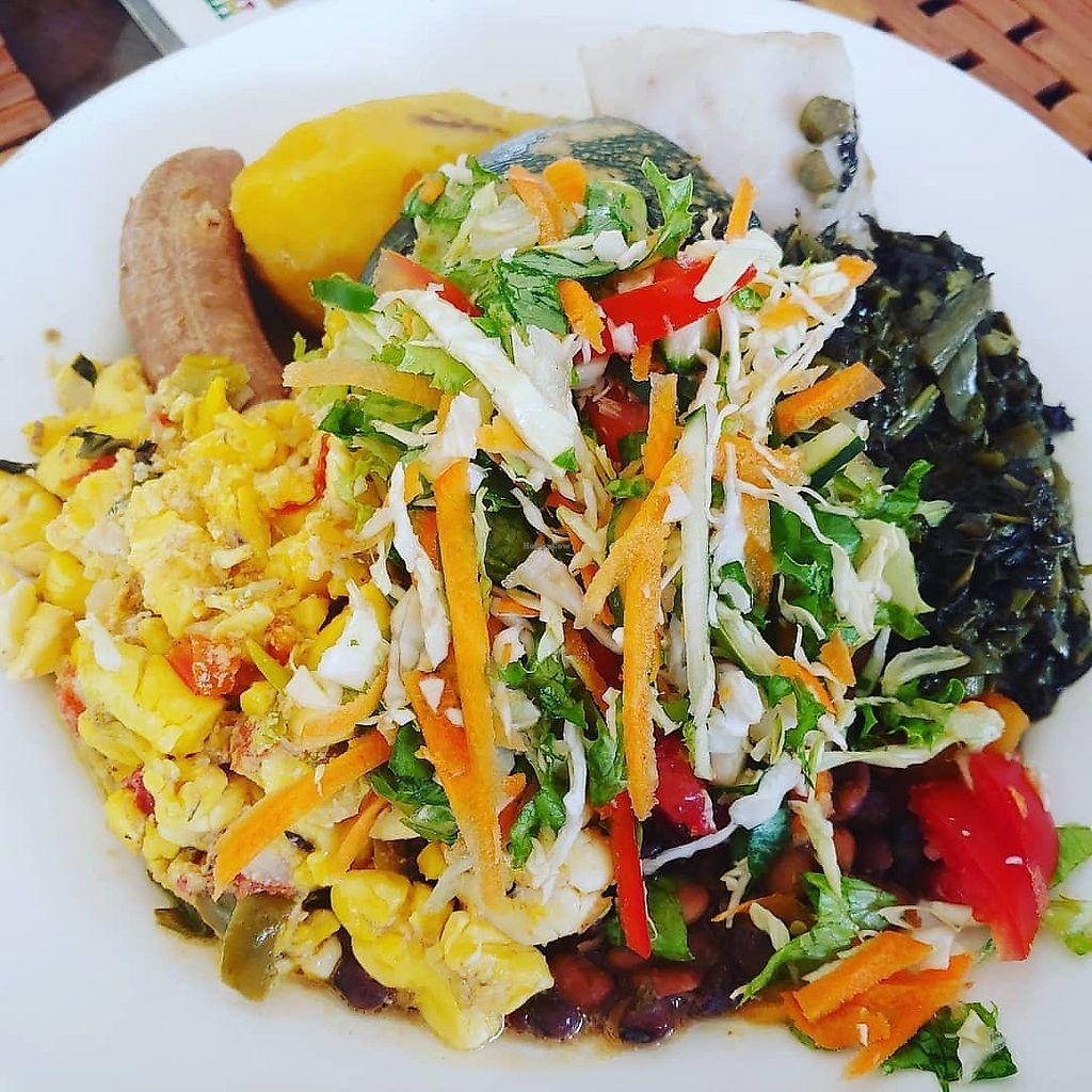 restaurants in ocho rios 2400, best restaurants in ocho rios 170, ocho rios food, where to eat in ocho rios, Calabash Ital Restaurant